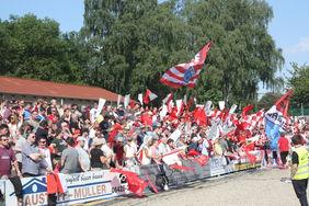 Fans des TSV Steinbach Haiger. Foto: Läpple